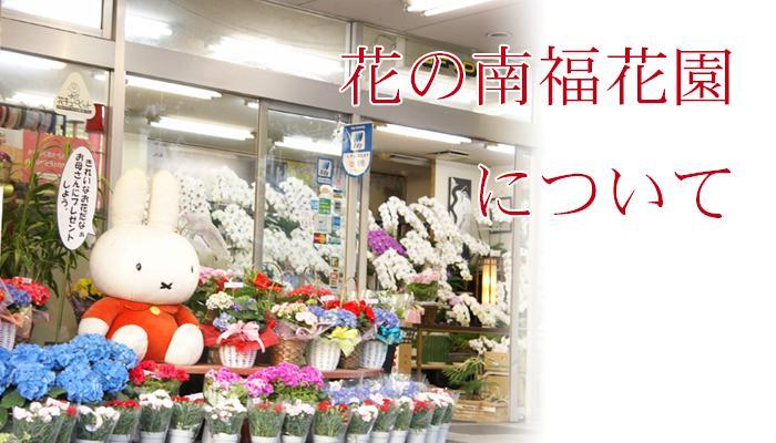 花の南福花園を運営する株式会社南福花園の会社案内や実店舗の情報などを掲載しています。
