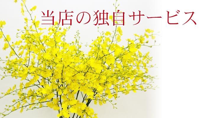 他の花屋さんとは違う花の南福花園の独自のサービスを掲載しております。