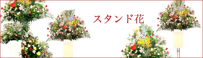 大迫力のスタンド花は、開店祝い等に人気です。当店配達範囲は当日お届けも可能です。